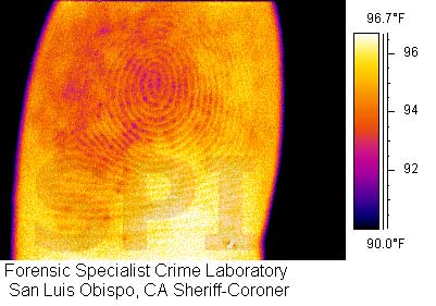 Thermal image of a finger print
